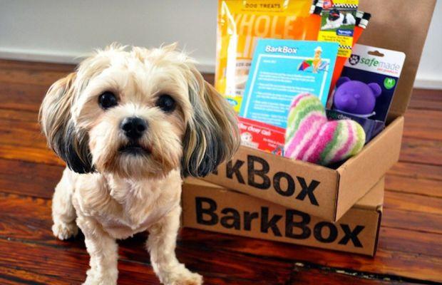 barkbox-1.jpg