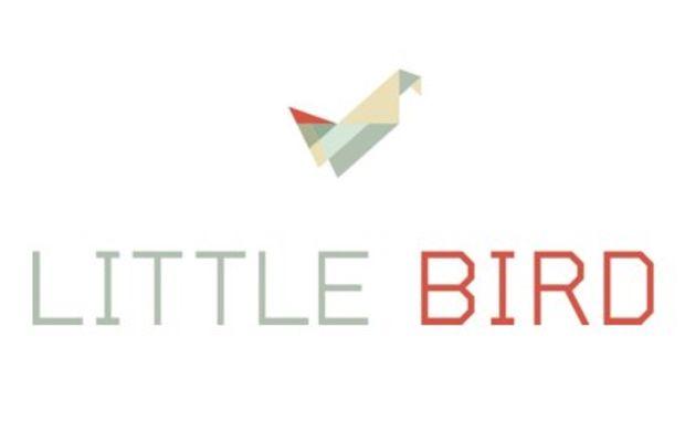 little-bird.jpg