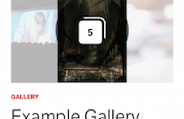 Gallery on a mobile device.