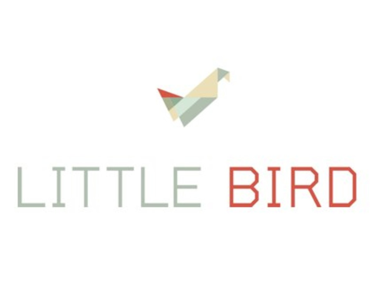 little-bird.jpg