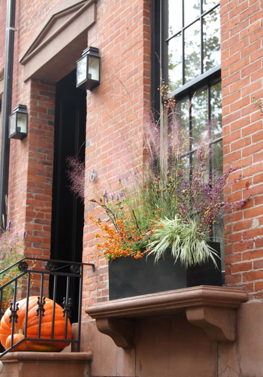 halloween-planter-1-erinboyle-gardenista.jpg